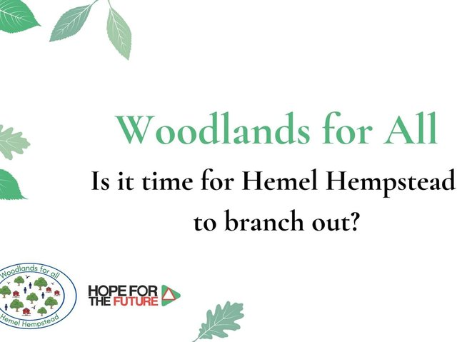 Woodlands for All: Is it time for Hemel Hempstead to branch out?