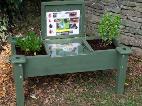 Chambersbury Primary School won an insect sit–and-study centre