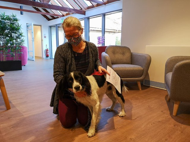 Ann volunteers at Grove House with her Pets as Therapy dog, Kaspar