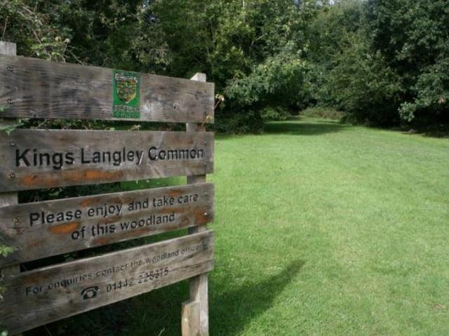 Kings Langley Common